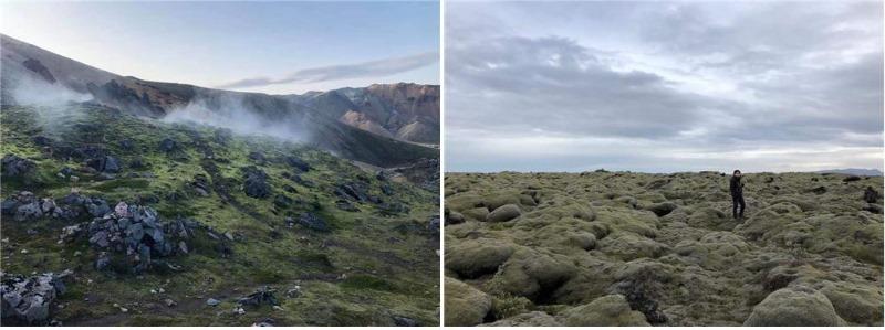 이정록.아이슬란드.jpg