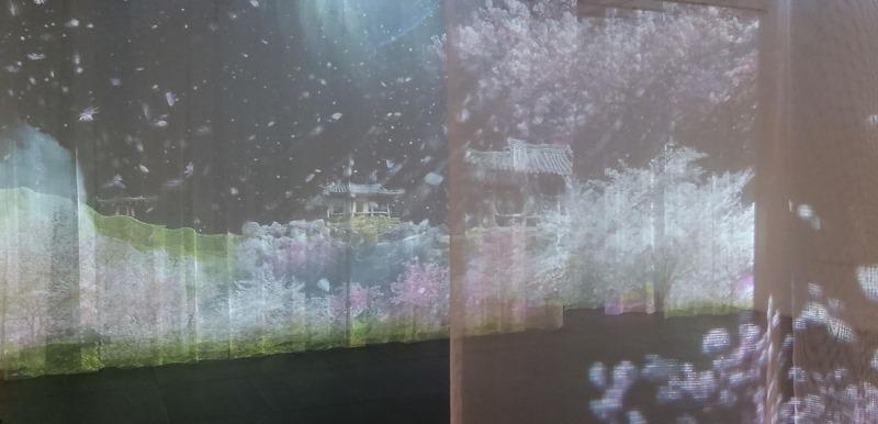 박상화 개인전.사유의숲.신세계.200618-13.jpg