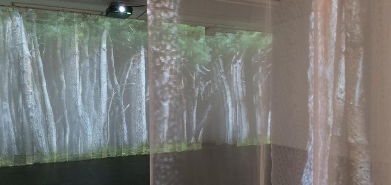 박상화 개인전.사유의숲.신세계.200618-7.jpg