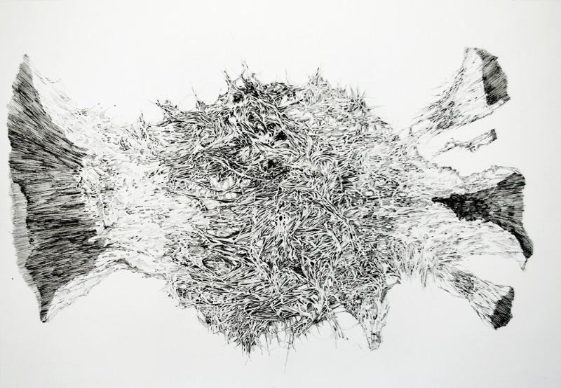 3. decompse 94x65 cm, ink on paper, 2014.jpg