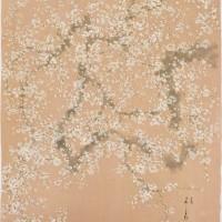 허달재|백매|2011|95x133cm