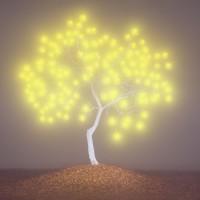 이정록|The tree of life2-6||